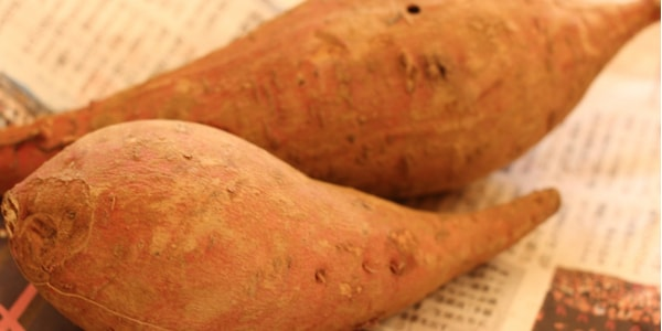 焼き芋の皮には栄養があるの
